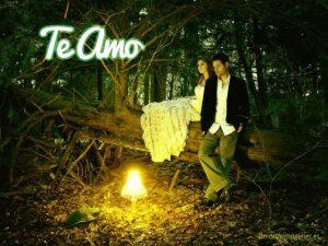 Imagenes con la frase te amo en el bosque