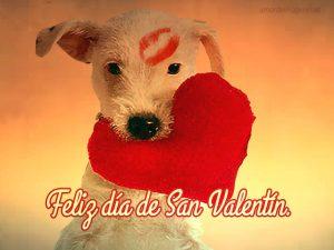Imágenes de perros con la frase feliz día de san valentín beso