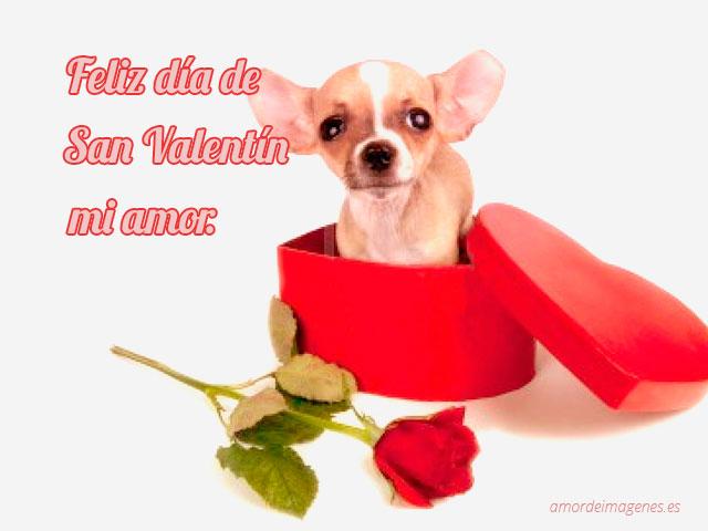 Imágenes con movimiento para el Día de San Valentín