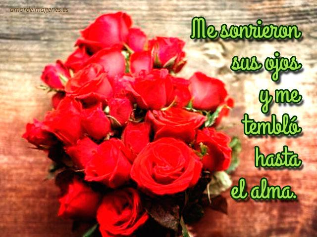 im u00e1genes de rosas con frases de amor