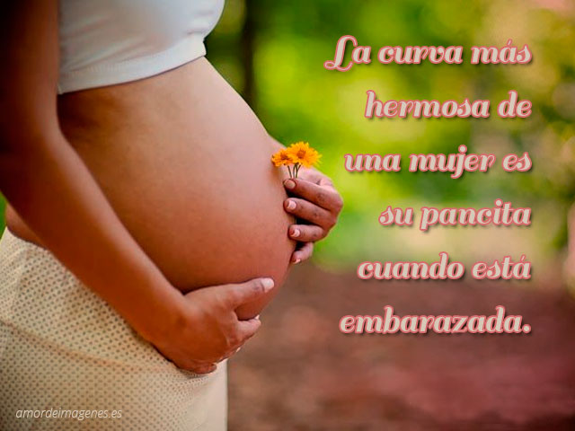 imagenes tiernas de embarazo pancita y flor