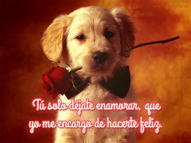 industria del amor con ♥poemas♥ rosas rojas - YouTube
