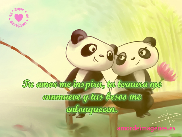 Imgenes tiernas de pandas con frases
