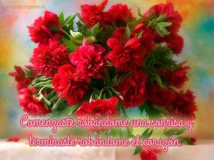 Imágenes de claveles rojos con frases ramo