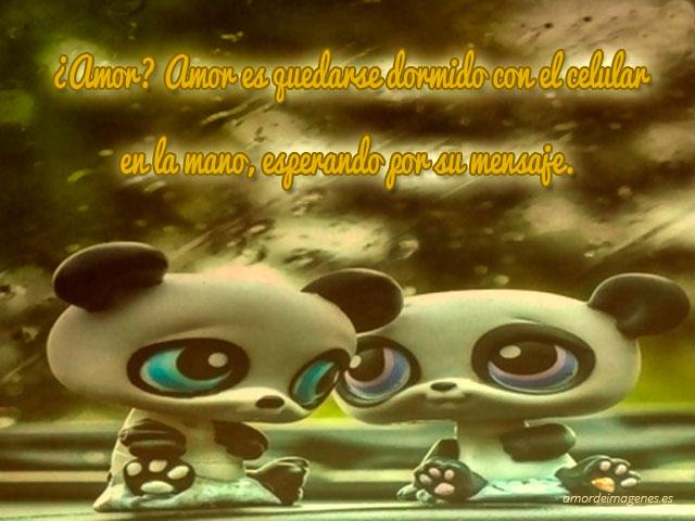 Imagenes Tiernas De Pandas Con Frases