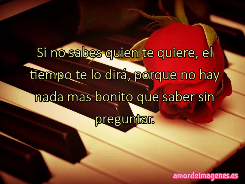 Imágenes de Rosas con Frases de Amor rosa y piano