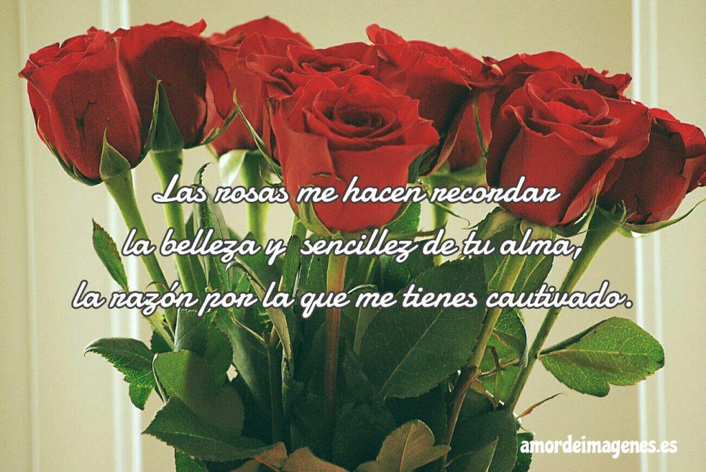 Rosas Bonitas de Amor alma sencilla