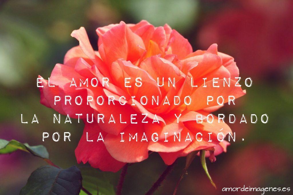 Rosas Bonitas de Amor rosa naranja