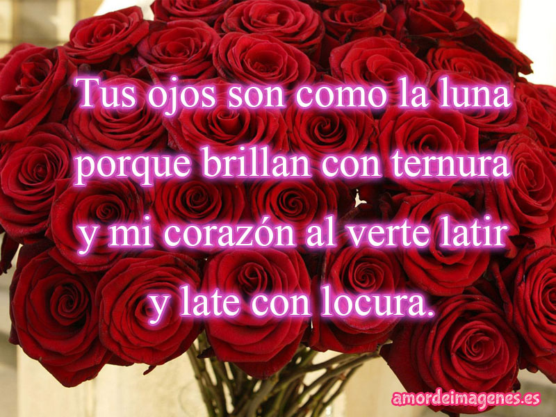 rosas rojas tus ojos