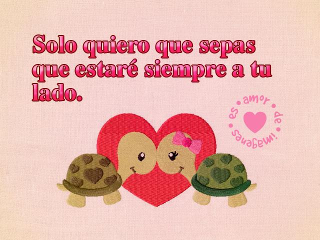 Imágenes de amor con tortugas enamoradas