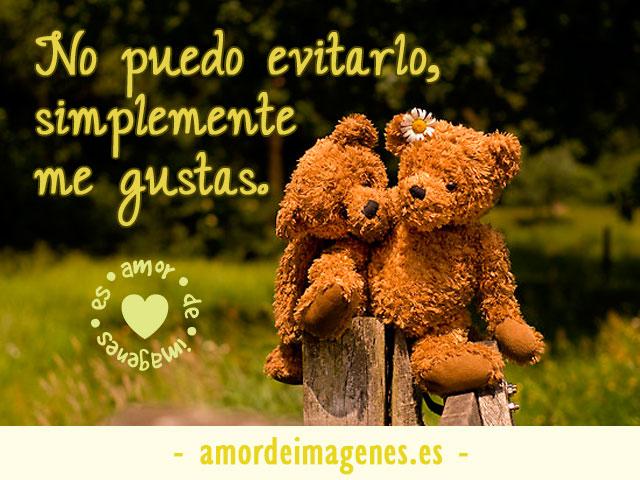 Imágenes de Ositos con Frases de Amor osos en una cerca