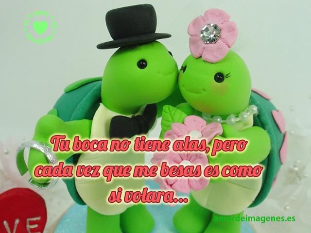 tortugas-enamoradas
