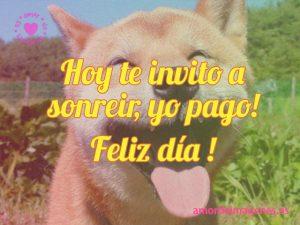 Imagenes de Felicidad perro