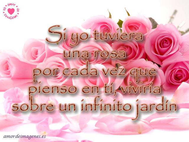 Aquí les dejo las hermosas Imágenes de Rosas con Frases de Amor: