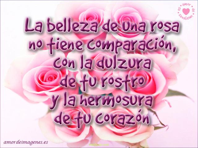 Imágenes de Rosas con Frases de Amor ramo rosado