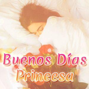 Bonita imagen de buenos días princesa