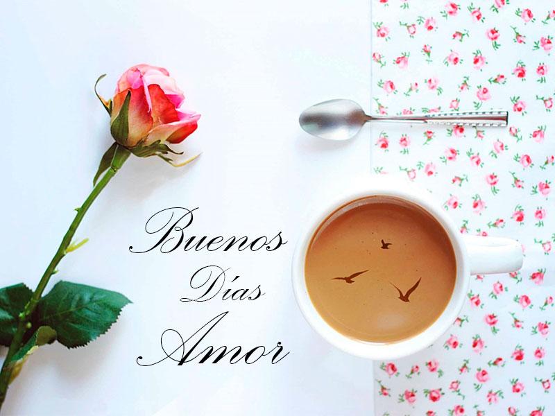 Imágenes de Buenos Días Amor Mío