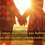 El amor es un alma que habita en dos cuerpos entrelazados
