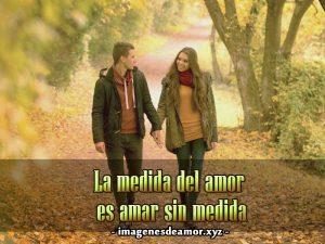imagen-de-amor-de-enamorados-tomados-de-la-mano-bellas-imagenes-de-enamorados-paseando