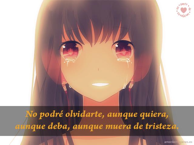 No podré olvidarte, aunque quiera, aunque deba, aunque muera de tristeza.