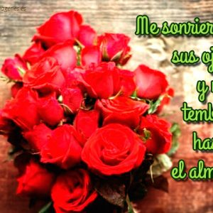 imagenes-de-rosas-con-frases-de-amor-ramo