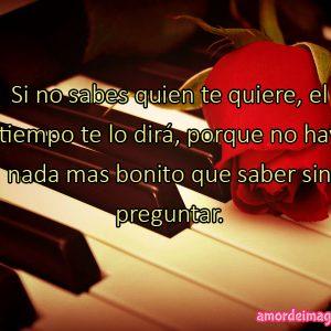 imagenes-de-rosas-con-frases-de-amor-rosa-y-piano