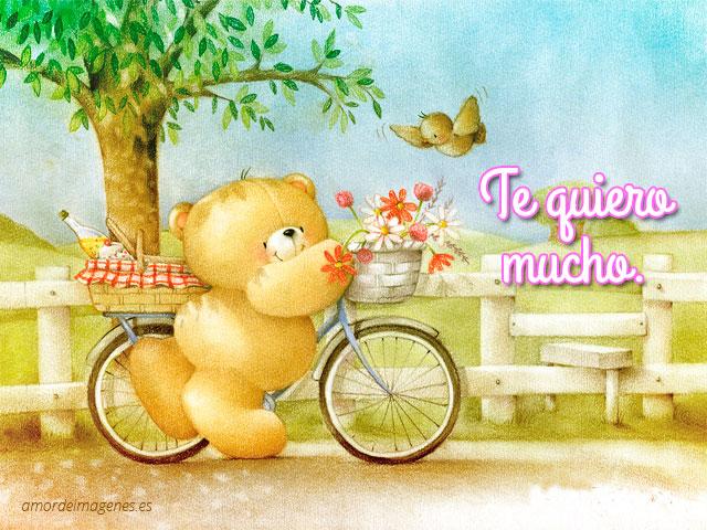 osito-bicicleta-con-frase-de-amor