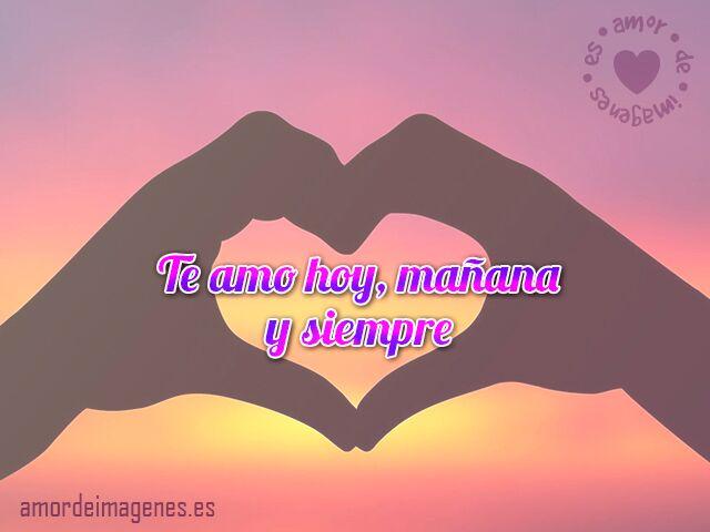 Te amare toda la vida