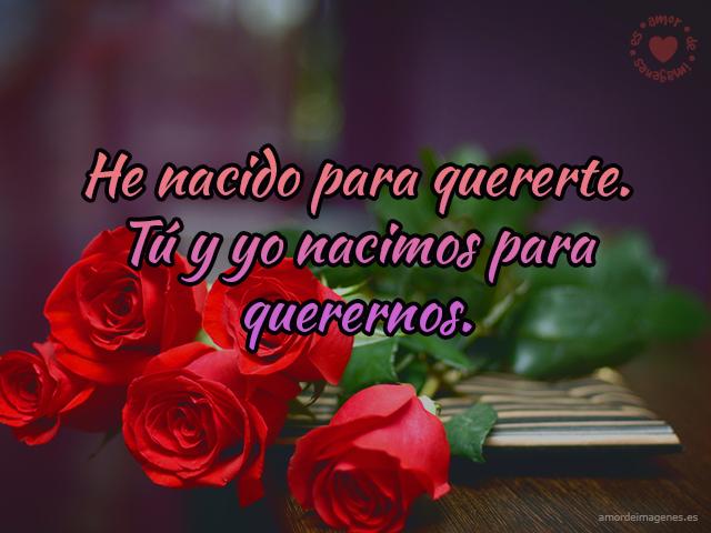 Imagen Con Rosas Rojas Romanticas Imagenes De Amor Para Descargar Al