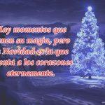 Hay momentos que tienen su magia, pero la Navidad es la que alienta a los corazones eternamente.