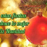 En estas fiestas te deseo lo mejor. Feliz Navidad