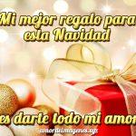 Mi mejor regalo para esta Navidad es darte todo mi amor.