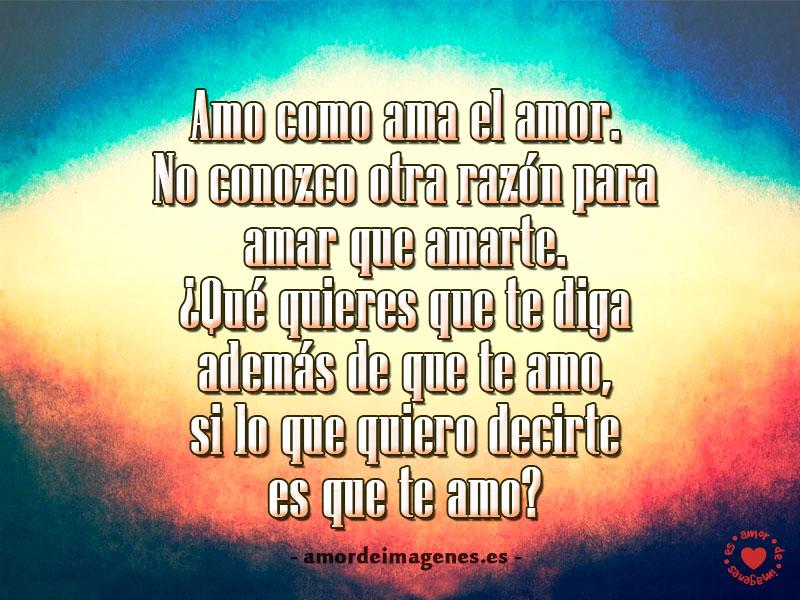 Amo como ama el amor. No conozco otra razón para amar que amarte. ¡Qué quieres que te diga además de que te amo, si lo que quiero decirte es que te amo?
