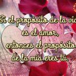 SI el propósito de la vida es el amor, entonces el propósito de la mía eres tú.