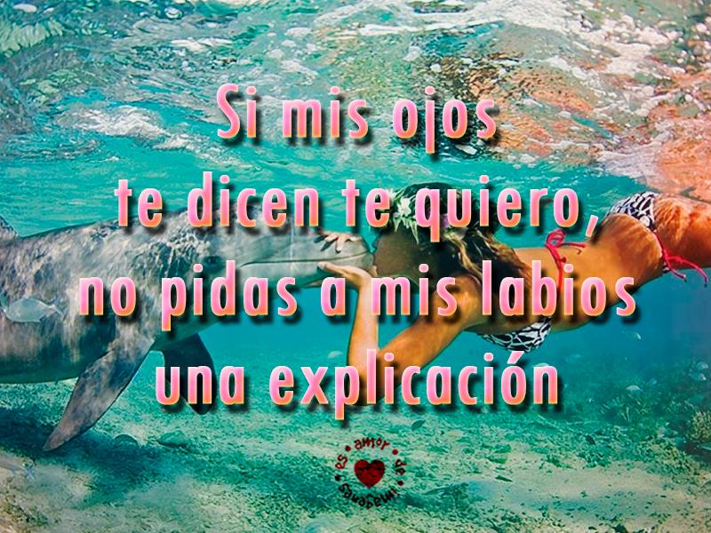 Imagenes Con Frases De Amor De Mar: Hermosas Imágenes De Amor En El Mar
