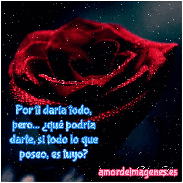 Imagenes De Rosas Con Movimiento Y Frases