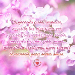 bellas-flores-junto-a-poema-de-amor-para-dedicar