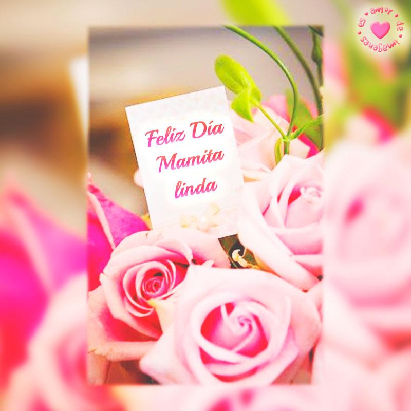 Bonita dedicatoria con rosas para el día de la madre