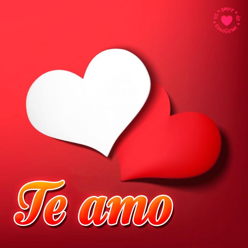 corazones con frase te amo
