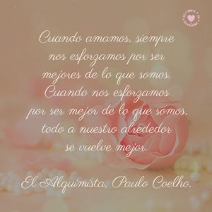 hermosa-rosa-con-bella-frase-de-El-Alquimista-de-Paulo-Coelho