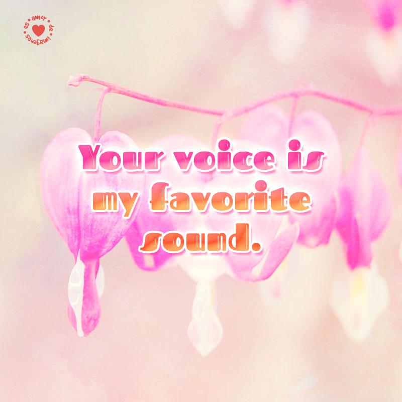 linda-imagen-de-flores-de-amor-con-frase-para-compartir-en-inglés