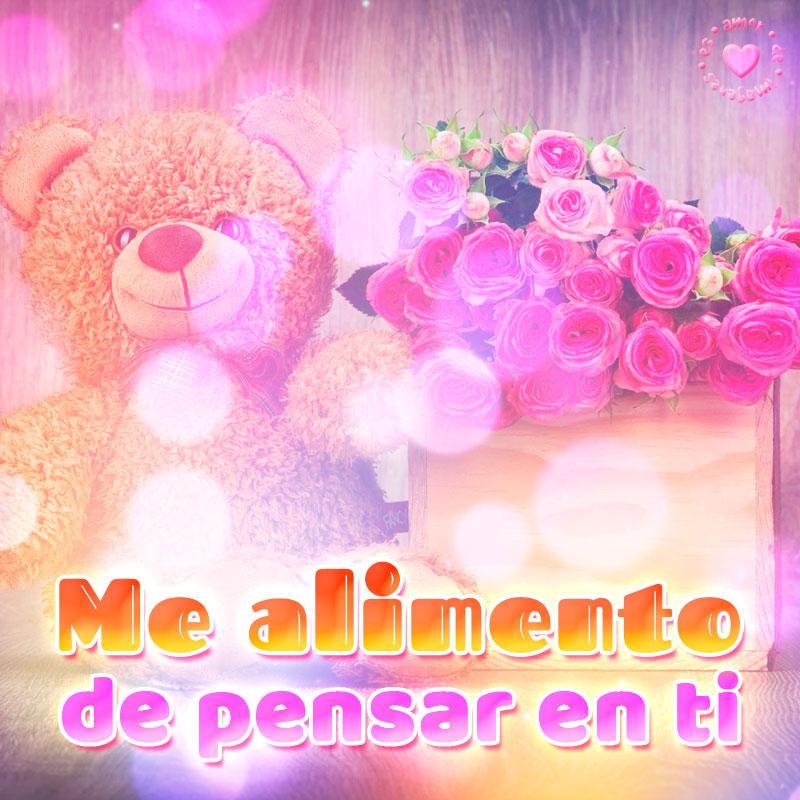 linda imagen de osito con rosas y frase de amor