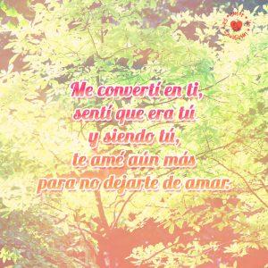 postal-de-amor-con-poema-en-fondo-de-árboles