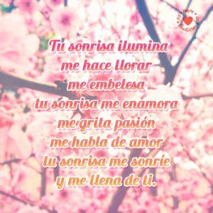 tierno-poema-de-amor-con-flores-rosadas-de-fondo