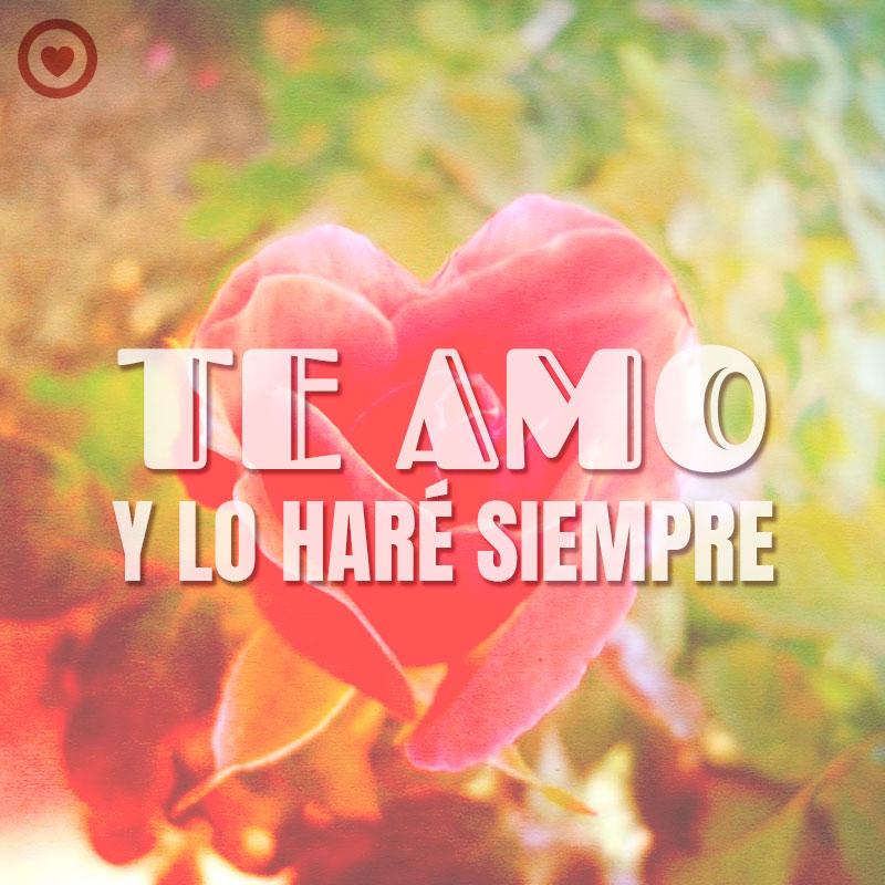 bonita rosa con forma de corazón y frase de te amo