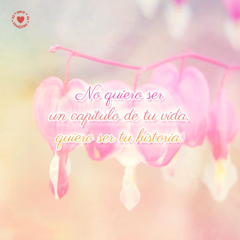 bonitas-flores-en-forma-de-corazones-enamorados-con-bella-frase-romántica