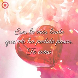 imagen de amor de corazón rojo con frase de amor