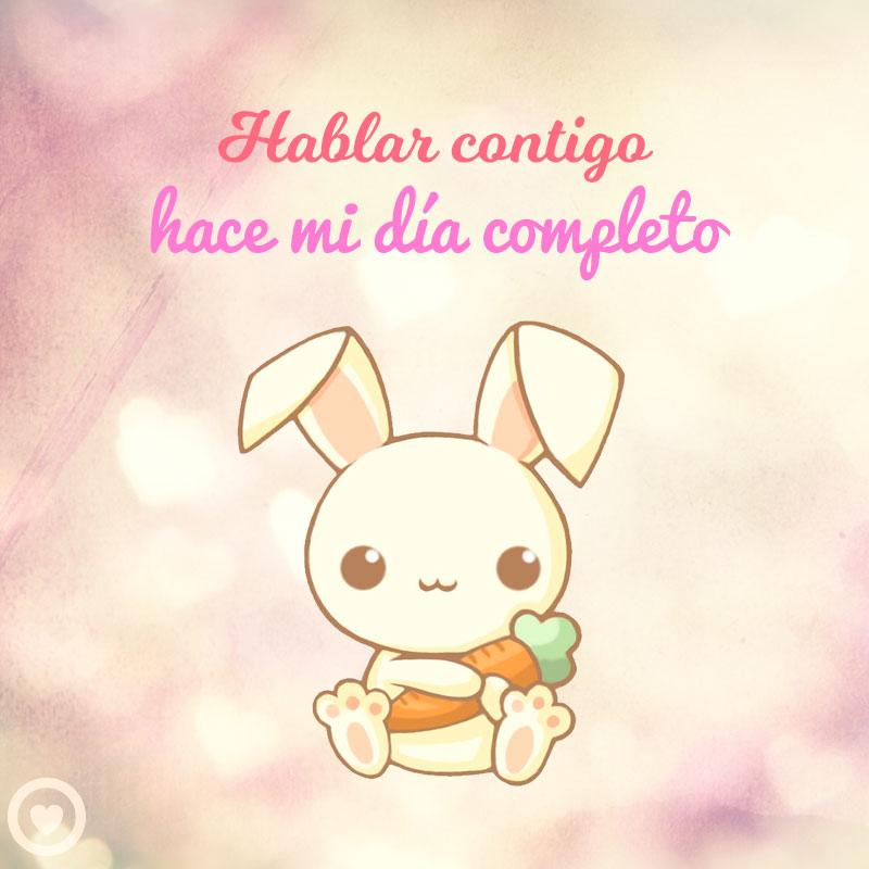30 Imagenes Kawaii Chibi Amor Dibujos Animales Pikachu