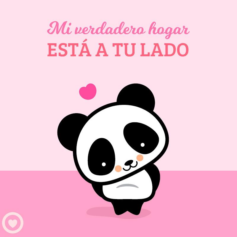 lindo panda kawaii de amor