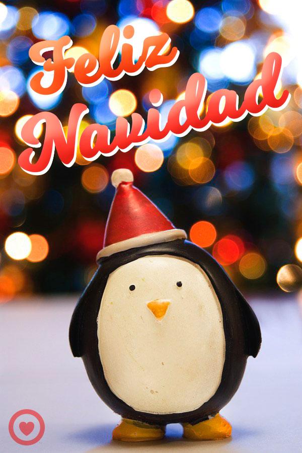 imagen de navidad con frase feliz navidad